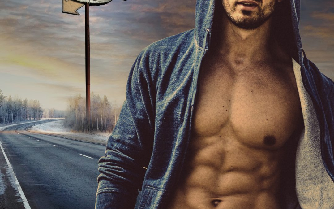 Truck Stop Tryst by Krissy Daniels Blog Tour