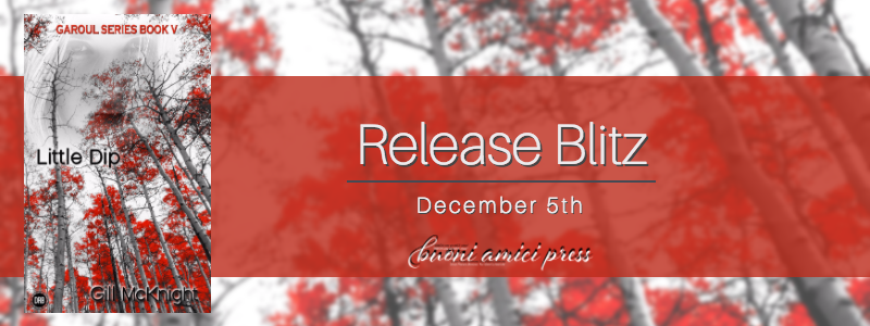 #ReleaseBlitz Little Dip By Gill McKnight