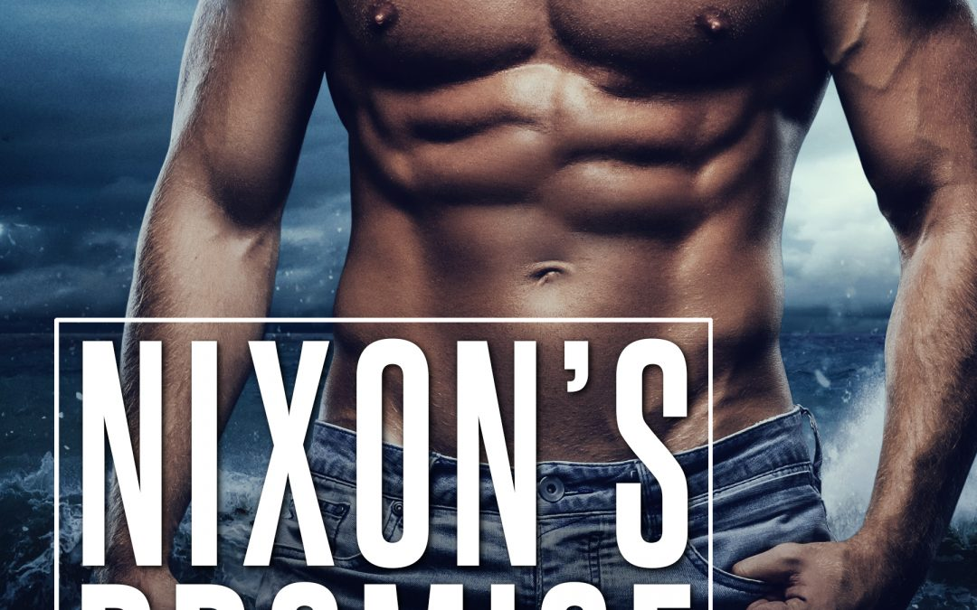 [New Event] Nixon's Promise (Gemini Group, Book 1) by Riley Edwards Release Blitz