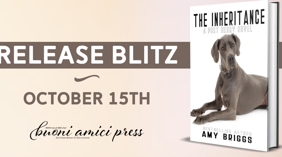 #ReleaseBlitz The Inheritance (A Port Henry Novel, Book 1) By Amy Briggs