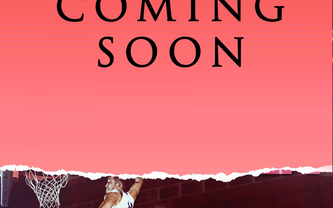 [New Event] HOOPLA (Detroit Sports Network, #3) by Liz Crowe Blog Tour